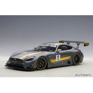 Mercedes Benz AMG GT3 Presentation Car